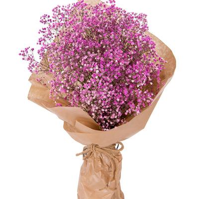 핑크안개 꽃다발