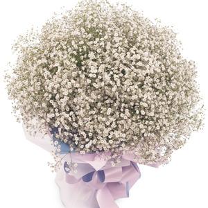 안개풍성 꽃다발