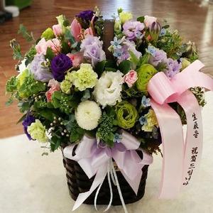 보라그린 꽃바구니